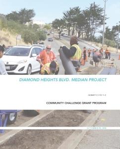 DHB Median CCG Application_Cover